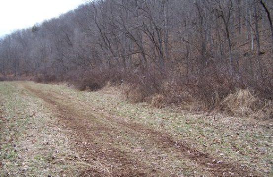Leading Creek Road