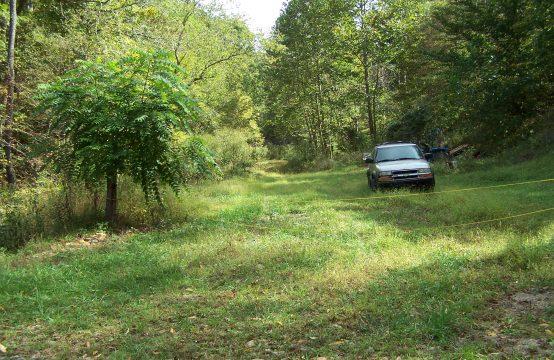 Pine Creek Road, Grantsville, WV  26147